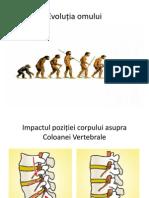 40550017 Suport Ortopedic Power Point Presentation