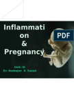 Inflammation and Pregnancy