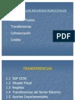 Presupuesto Municipal Estructura