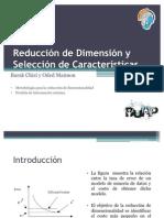 Reducción de Dimensión y Selección de Características