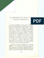 Astrada-La is Del Valor y Los Modelos Person Ales