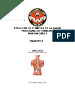 Diseccion Dorso Lateral Derecho- Hector Cajiao