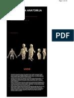 Plasticna-Anatomija