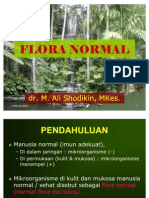 Flora Normal [Dr. Ali Shodikin]