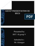 Group Presentation on Becs
