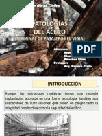 Patologia Del Acero