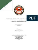 Diseccion Pierna Region Antero Lateral - Maria Lucia Valderrama