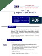 Fiche Guide de Prospect Ion Commerciale