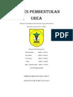 Makalah Proses Pembentukan Urea