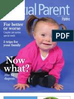Chicago Special Parent 2012