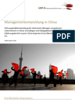 USP-D Managemententwicklung in China