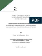 CASTELLANOS W. Caracterización de la capacidad de innovación de los actores involucrados en los sistemas de producción de hortalizas bajo ambiente controlado,