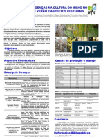 MANEJO DE DOENÇAS NA CULTURA DO MILHO NO PLANTIO DE VERÃO E ASPECTOS CULTURAIS