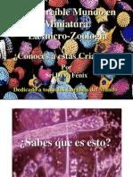 MicroZoologia