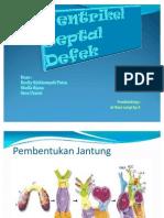 Ventrikel Septal Defek