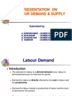 Labour Demand & Supply