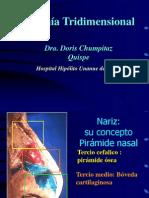1º Nariz - Anatomia, Fisiologia y Senos Paranasales