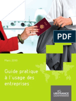 V.I.E._guidepratique