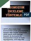 kromozom inceleme yöntemleri
