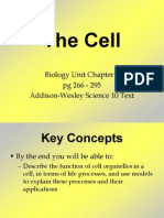 Biology Unit Chapters 2 and 3 Plus IB