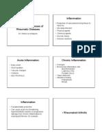 Inflammatory Processes of Rheumatic Diseases