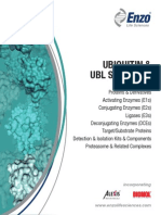 Ubiquitin and UBL Signaling