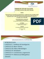 Diapositivas Para Sustentar Tesis VIERNES 2003