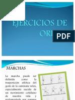EJERCICIOS DE ORDEN