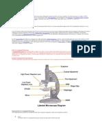 Compound Microscope 12
