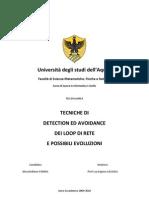Tecniche di detection e avoidance dei loop di rete e possibili evoluzioni