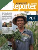 Vredeseilanden Indonesië Reporter