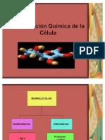 Composicionquimicadelacelula