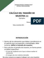 CÁLCULO TAMAÑO DE MUESTRA
