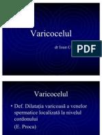 4. Varicocelul