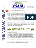 VSAAC November 2011 Newsletter