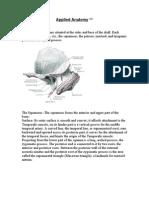 Applied Anatomy