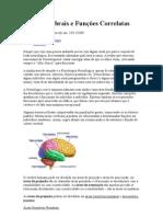 Áreas Cerebrais e Funções Correlatas