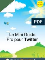 Mini Guide Twitter Pro ConseilsMarketing