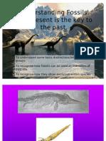 Understanding Fossils