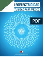 La Nucleoelectricidad-Resumen Ejecutivo