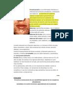 El acné juvenil es una enfermedad inflamatoria e infecciosa de los folículos pilosebáceos