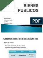 BIENES PUBLICOS
