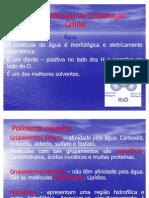 sintese_de_Proteinas_2