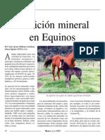 Nutricion Mineral en Equinos