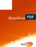 Blaze Dream Corporate Profile