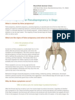 False Pregnancy or Pseudo Pregnancy in Dogs