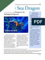 7.Leafy Sea Dragon