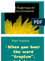 Plant Responses to the Environment 1