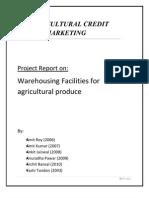 Warehousing Final Report