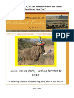Wildebeests Head Into a New Year 1-4-12